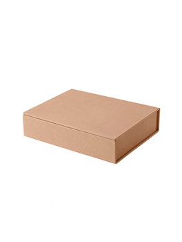 Fritz Hansen Leather Box neutral-20