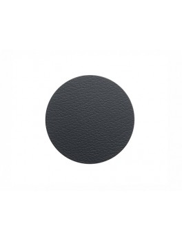 LindDNA Glass Mat Circle Bull (Black)-20